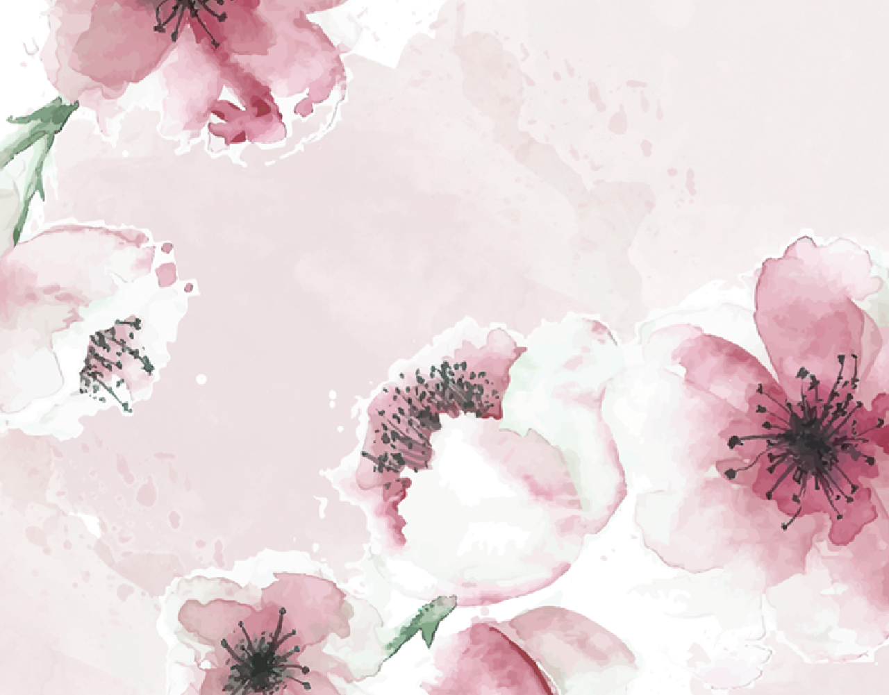 WebNew_Floral 01